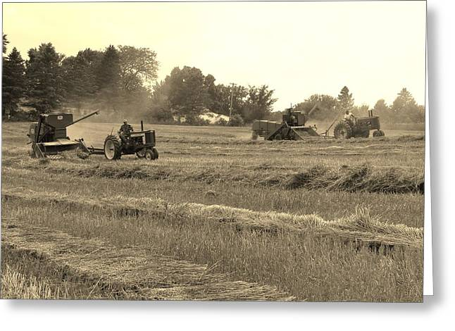 Recently Sold -  - Farmers Field Greeting Cards - Yesteryear Greeting Card by Peter Bouman