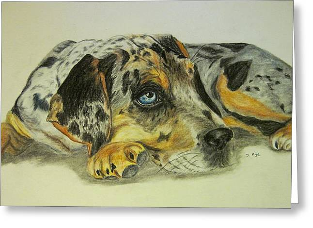 Puppies Pastels Greeting Cards - Yiska Greeting Card by Joan Pye