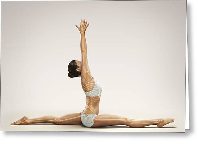 Digitally Generated Image Photographs Greeting Cards - Yoga Monkey Pose Greeting Card by Science Picture Co