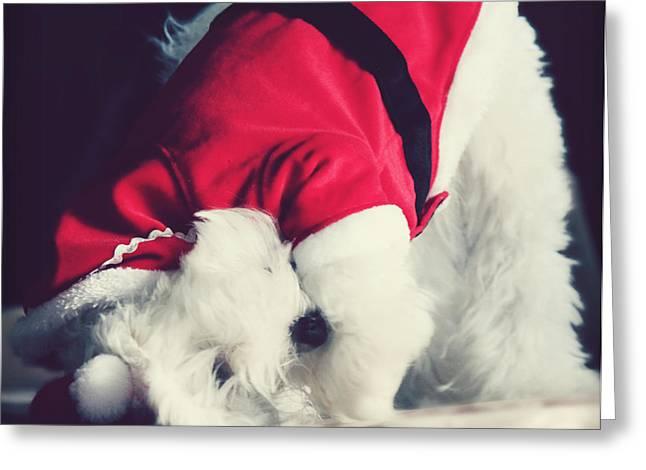 Doggy Cards Greeting Cards - Yoga Santa Greeting Card by Melanie Lankford Photography