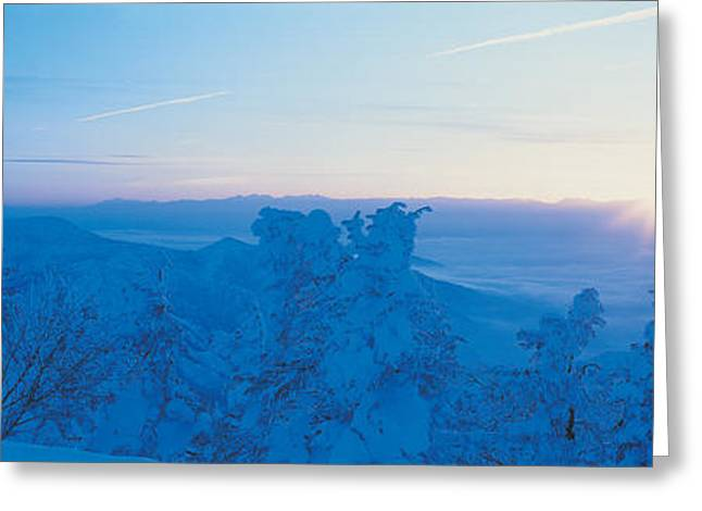 Snowy Day Greeting Cards - Yokoteyama At Sunrise Shiga Kogen Greeting Card by Panoramic Images
