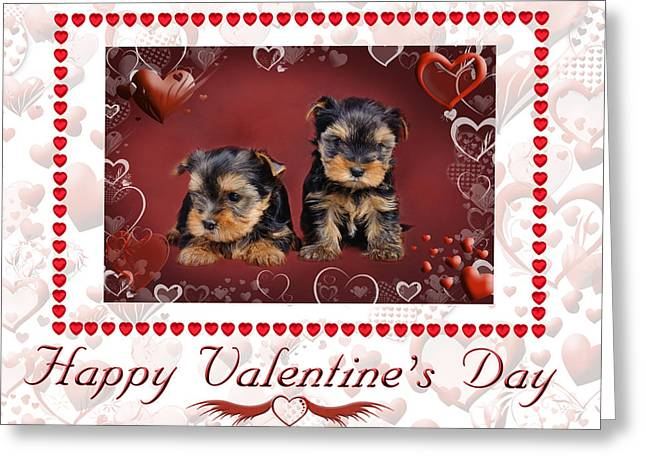 Animals Love Greeting Cards - Yorkie Valentine Card Greeting Card by Waldek Dabrowski