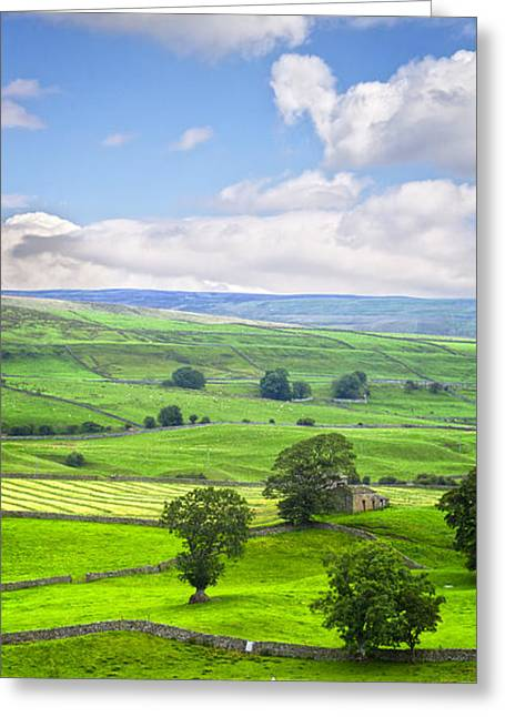 Dry Stone Wall. Greeting Cards - Yorkshire Dales Wensleydale England Greeting Card by Colin and Linda McKie