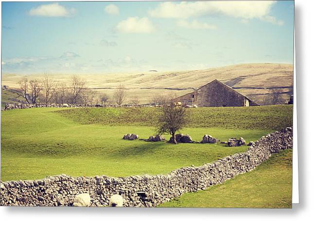 Dry Stone Wall. Greeting Cards - Yorkshire Dales with Dry Stone Wall Greeting Card by Colin and Linda McKie