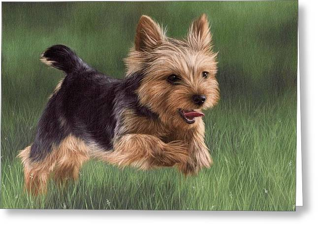 Pet Portrait Artist Greeting Cards - Yorkshire Terrier Painting Greeting Card by Rachel Stribbling