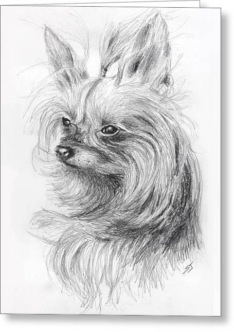 Dog Sketch Greeting Cards - Yorkshire Terrier Greeting Card by Susan Jenkins