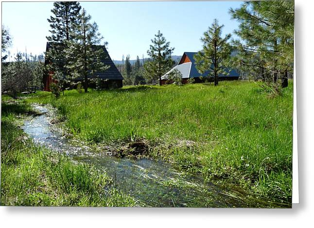 Meadown Greeting Cards - Yosemite Foresta Meadow and Barns Greeting Card by Jeff Lowe