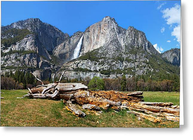 Half Dome Greeting Cards - Yosemite Meadow panorama Greeting Card by Jane Rix