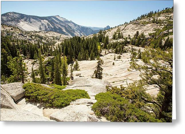 Yosemite National Park Greeting Card by Ashley Cooper