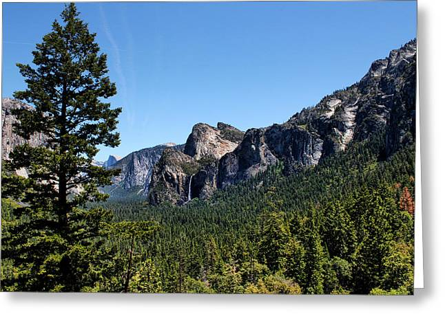 Featured Art Greeting Cards - Yosemite National Park Greeting Card by Judy Vincent