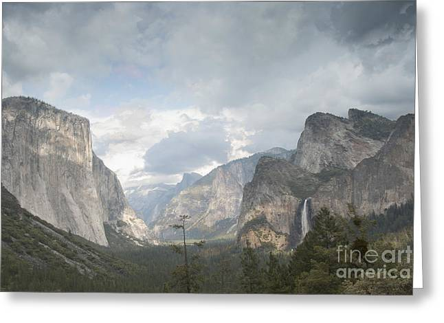 Bridalveil Falls Greeting Cards - Yosemite National Park Greeting Card by Juli Scalzi