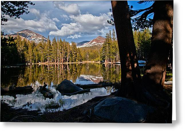 Pond Photographs Greeting Cards - Yosemite Reflecting Pond Greeting Card by Cat Connor