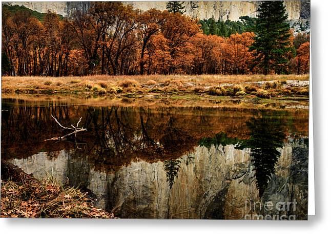 Terry Garvin Greeting Cards - Yosemite Reflections Greeting Card by Terry Garvin