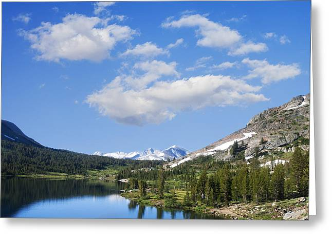 Levi Greeting Cards - Yosemite Greeting Card by Stella Levi