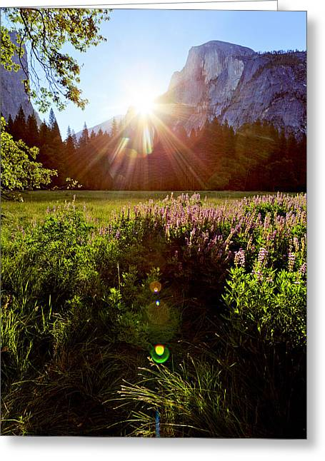 Sunrise Over California Greeting Cards - Yosemite Sunrise Over Half Dome Greeting Card by Patricia Sanders