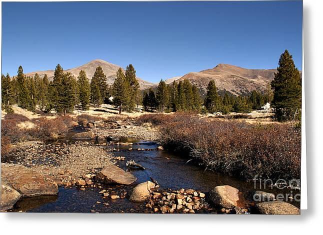 Landscape Print Greeting Cards - Yosemite Tuolumne Greeting Card by David Millenheft