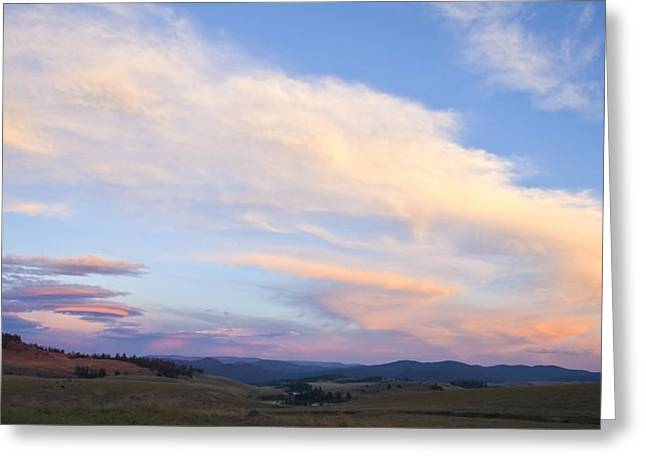 Sunset Prints Greeting Cards - You Can Almost Hear Them Singing Greeting Card by Theresa Tahara