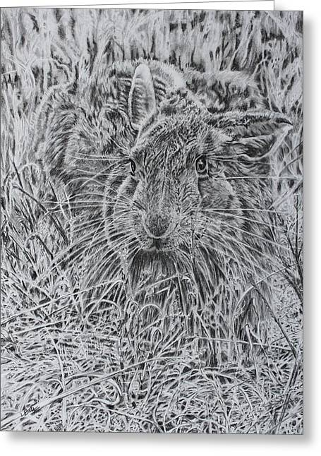 Camouflage Drawings Greeting Cards - You Cant Really See Me Greeting Card by Leonie Bell