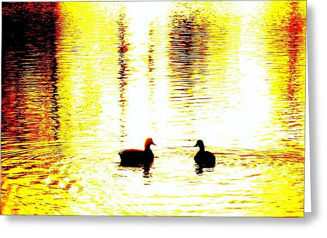 You light up my life  Greeting Card by Hilde Widerberg