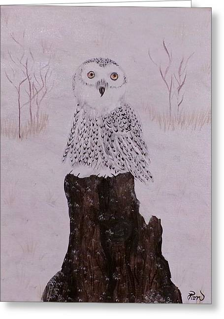 Tress Posters Greeting Cards - You said what? owl Greeting Card by Dallas Holloman
