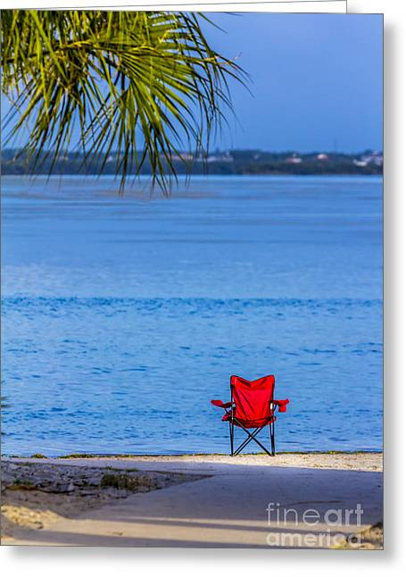 Jacksonville Greeting Cards - You Should be Here Greeting Card by Marvin Spates
