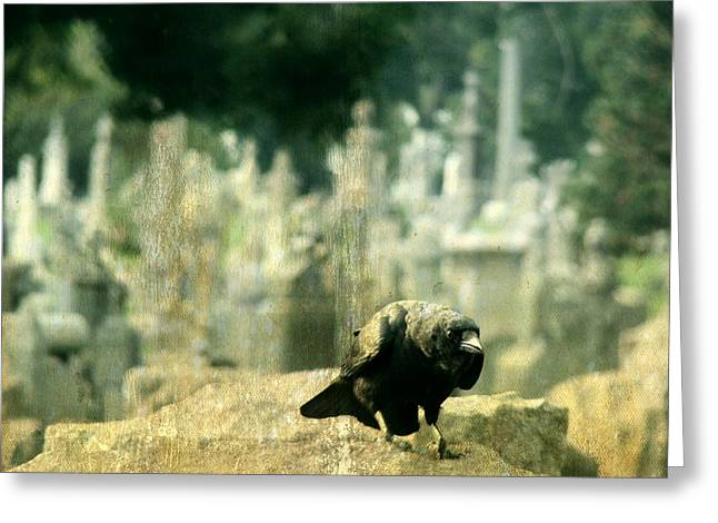 Crows On Tombstones Greeting Cards - You Talking To Me Greeting Card by Gothicolors Donna Snyder