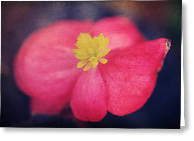 Texture Floral Greeting Cards - You Touch My Soul Greeting Card by Laurie Search