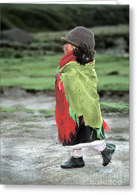 Andean Greeting Cards - Young Andean Indian In Ecuador Greeting Card by Ron Sanford