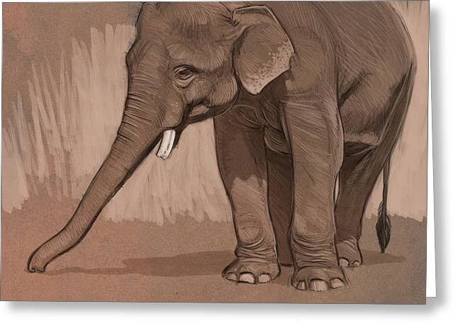 Blaise Greeting Cards - Young Asian Elephant sketch Greeting Card by Aaron Blaise