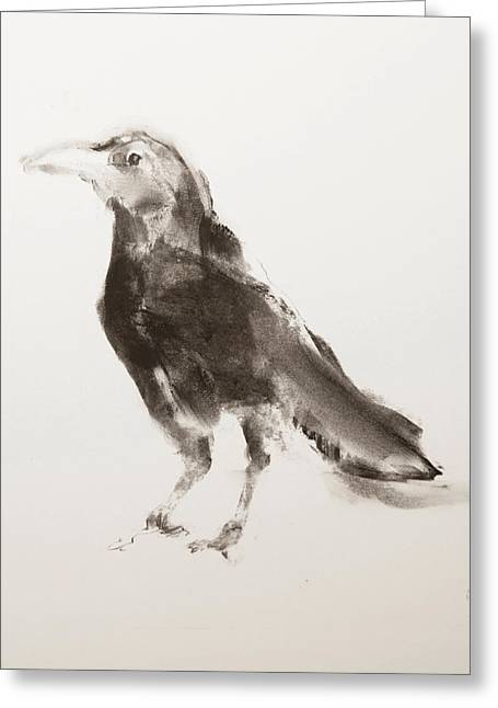 Breeds Pastels Greeting Cards - Young Crow Greeting Card by Janet Goddard
