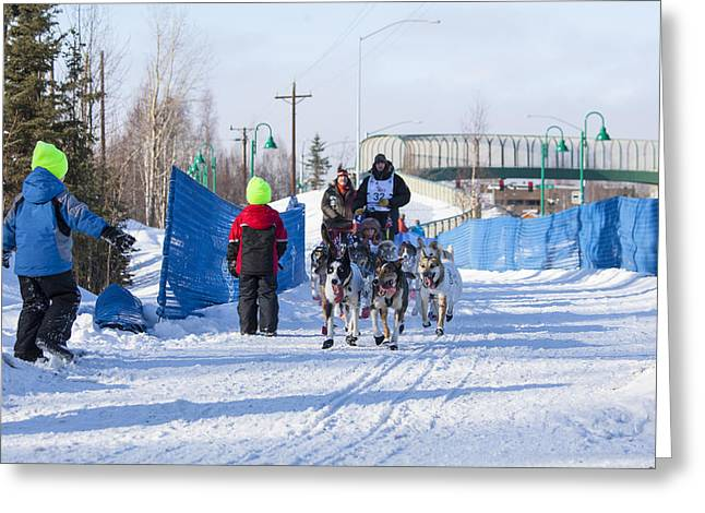Dog Sled Greeting Cards - Young Fans of Mushers Greeting Card by Tim Grams