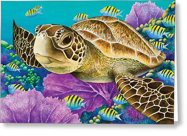 Marine Animal Greeting Cards - Young Green Sea Turtle Greeting Card by Carolyn Steele