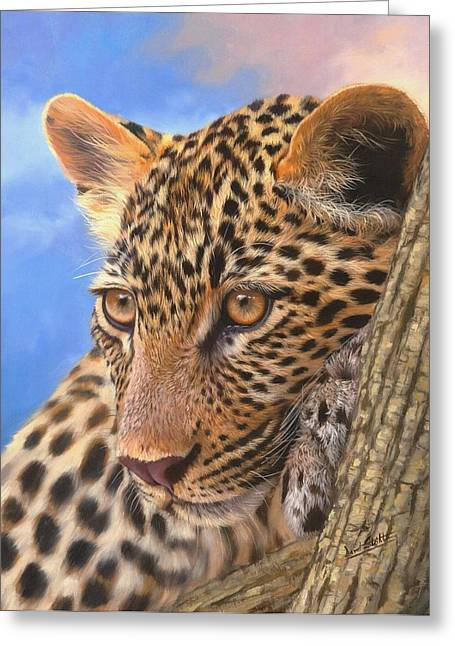 David Greeting Cards - Young Leopard Greeting Card by David Stribbling