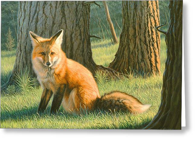 Red Foxes Greeting Cards - Young Red Greeting Card by Paul Krapf