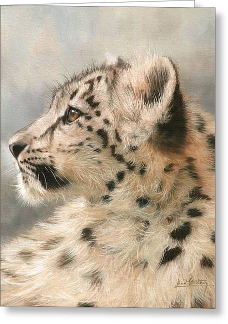 Snow Leopard Greeting Cards - Young Snow Leopard Greeting Card by David Stribbling