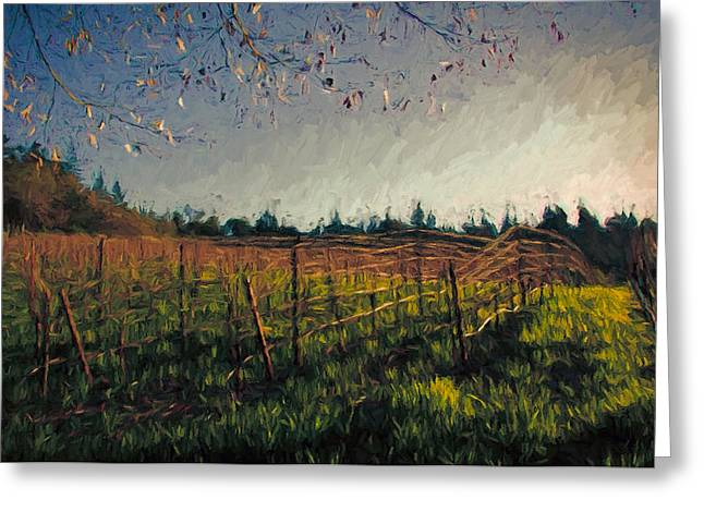 Sonoma County Vineyards. Mixed Media Greeting Cards - Young Vines on Trellis Greeting Card by John K Woodruff