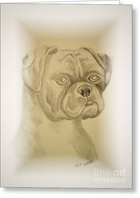 Working Dog Drawings Greeting Cards - Youngster - Bull Mastiff Greeting Card by Maria Urso