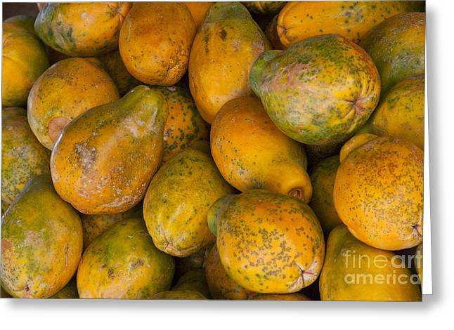 Mango Greeting Cards - Your Choice Greeting Card by Bob Phillips