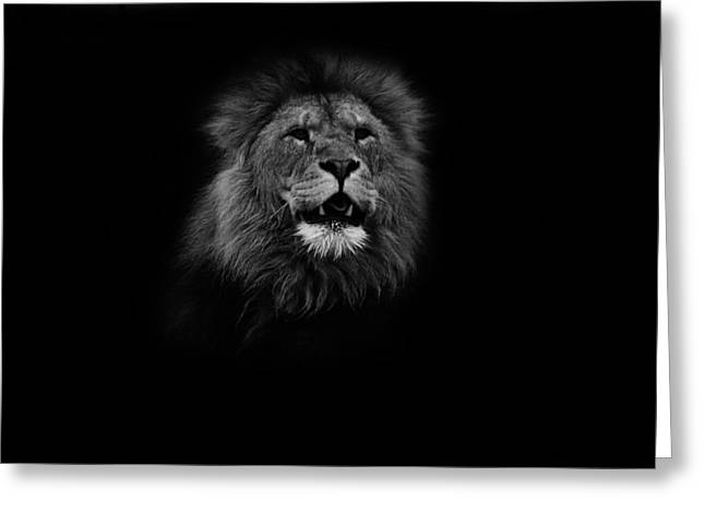 Bigcat Greeting Cards - Your Gonna Hear me Roar Greeting Card by Martin Newman