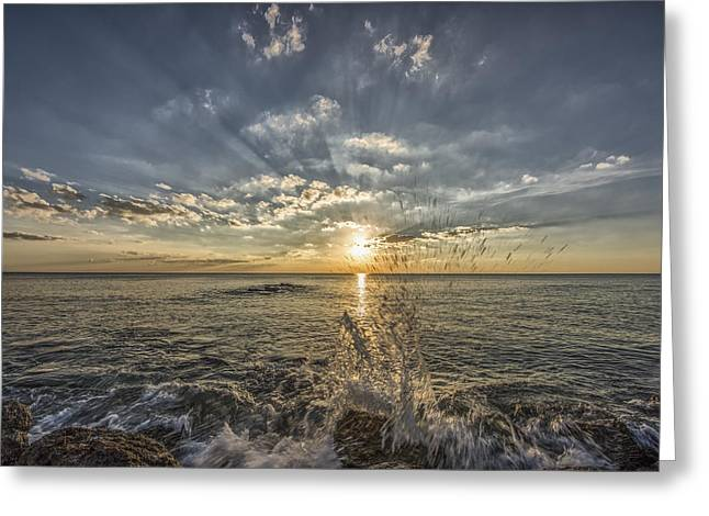 Fine Art Photography Galleries Greeting Cards - Your My Sun Greeting Card by Jon Glaser