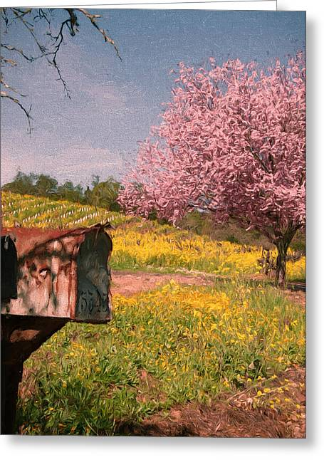 Sonoma County Mixed Media Greeting Cards - Youve Got Spring Greeting Card by John K Woodruff