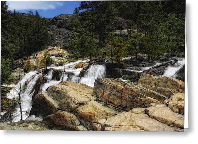 Waterfall Image Greeting Cards - Yuba River Falls Greeting Card by Donna Blackhall