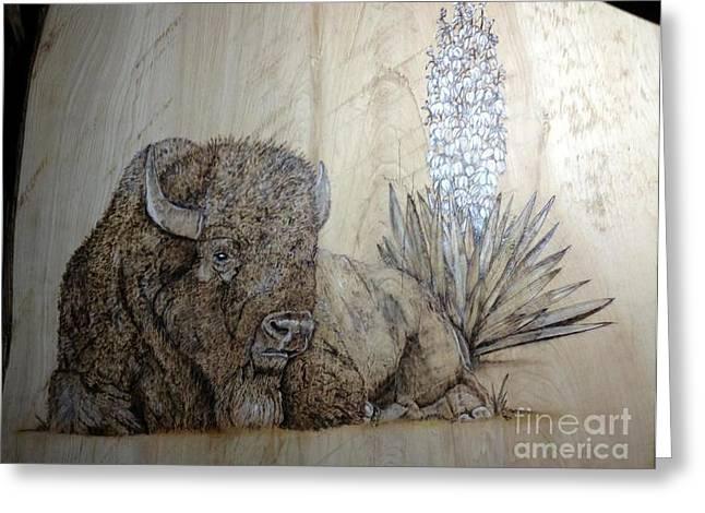 Buffalo Pyrography Greeting Cards - Yucca Buffalo Greeting Card by Cindy Jo Burleson