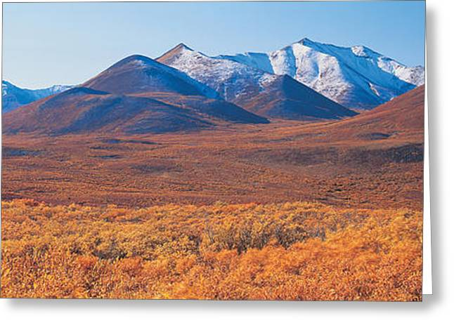 Yukon Territory Canada Greeting Card by Panoramic Images