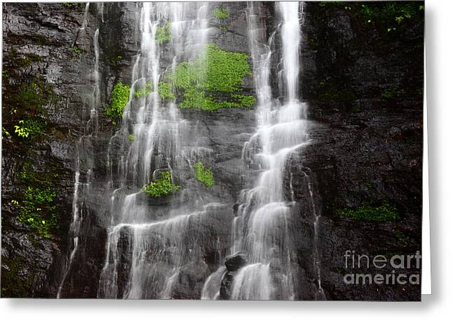 Water Effect Greeting Cards - Yungas Waterfall Detail Greeting Card by James Brunker