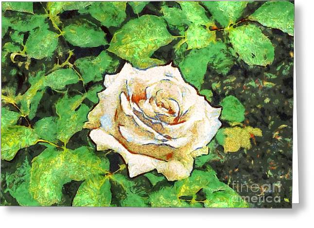 Rose Petals Pyrography Greeting Cards - YURY BASHKIN rose Greeting Card by Yury Bashkin