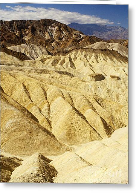 Rill Greeting Cards - Zabriskie Point In Death Valley Greeting Card by George Ranalli