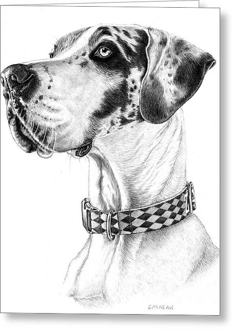 Dog Pencil Greeting Cards - Zack Greeting Card by Catherine Garneau