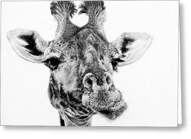 Serengeti Africa Drawing Greeting Cards - Zafara Greeting Card by Kathryn Hansen