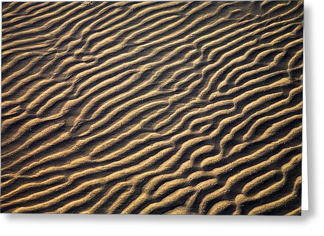 Sand Patterns Greeting Cards - Zanzibar, Tanzania Sand Patterns Greeting Card by Chris Upton